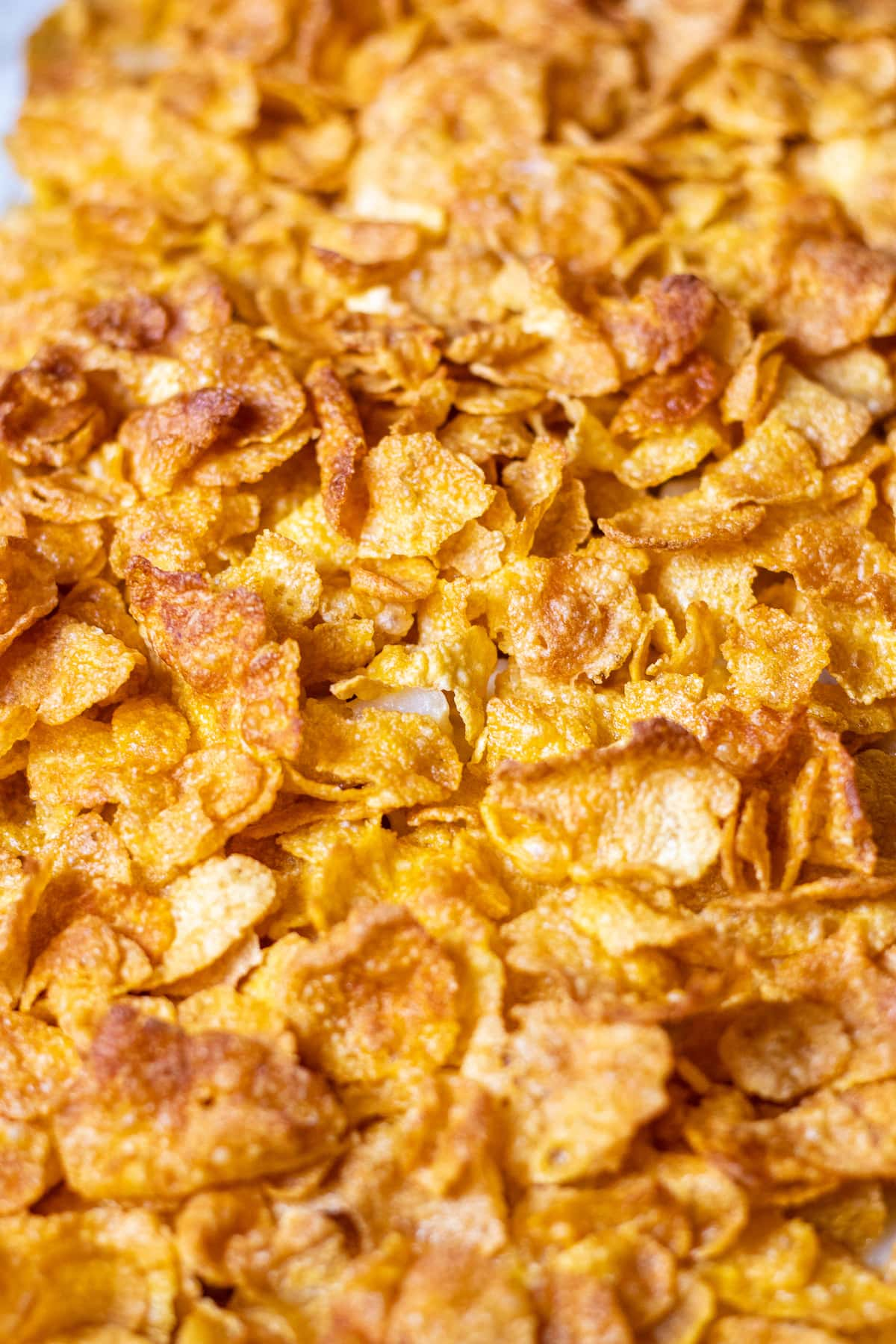 Close up of the toasted corn flakes on top.